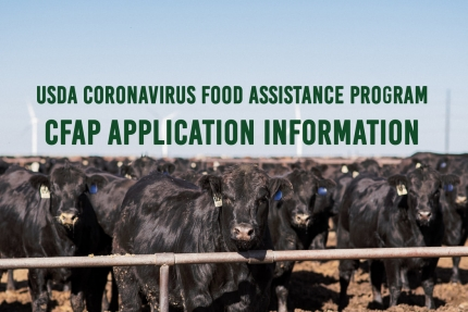 Cornyn: Coronavirus Relief Program for Texas Farmers, Ranchers, and Producers Accepting Applications